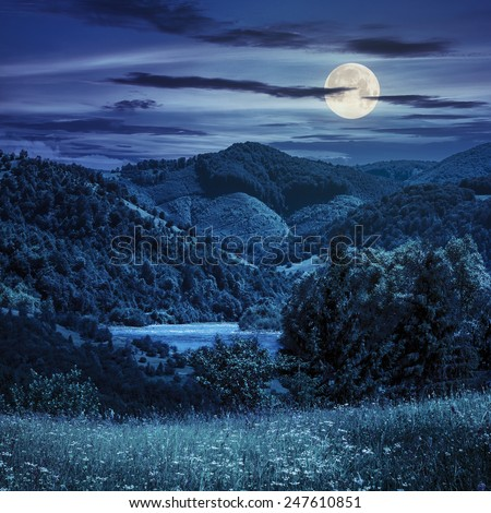 composite mountain summer landscape. pine trees on hillside meadow with wild flowers near the river in mountains at night in full moon light