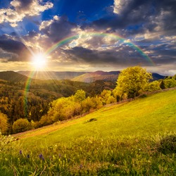 composite rural landscape. fence near the meadow and trees on the hillside. forest in fog on the mountain top in sunset light with rainbow