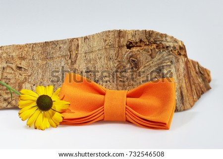 Composition: Extravagant orange bow tie, yellow flower and piece of sawn timber on a white background #732546508