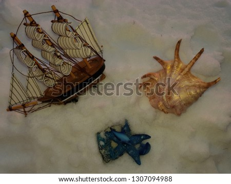 Composition from a small sailing vessel and a cockleshell. two dolphins and starfish on white sand