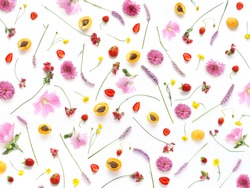 Composition from plants, wild flowers and red berries, isolated on white background. Strawberry,  apricots pattern, flat lay, top view. The concept of summer, spring, Mother's Day, March 8.
