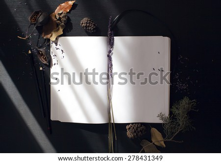 composition notebook, and dried plants with morning light