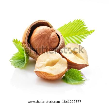 composition of hazelnut kernels, shells, leaves and whole hazelnut on white background