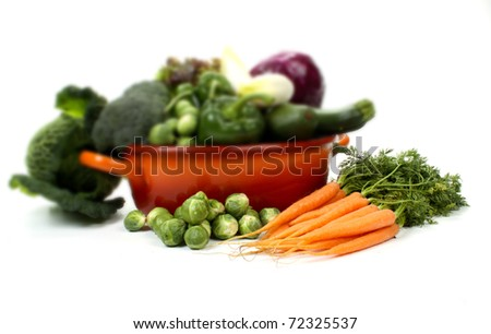 Composition of several fruits and vegetables