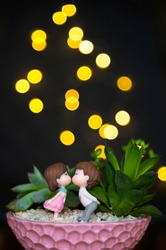 Composition of succulents and mini-sculptures of a girl and a boy kissing or in love. Yellow bokeh on a dark background. Be my valentine. Valentine's day
