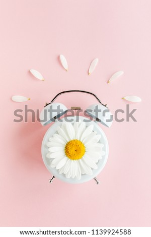Composition-Summer time from chamomile flower and clock on pink background. Flat lay, top view #1139924588
