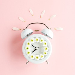 Composition-summer time from clock and chamomile flowers on pink background. Flat lay, top view