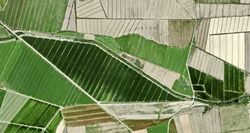 composition, tribute to Picasso, abstract photography of the Spain fields from the air, aerial view, representation of human labor camps, abstract art,