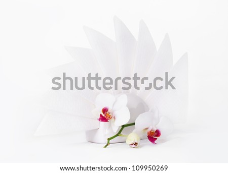 Composition White paper napkins & orchid/White paper napkins & orchid/White paper napkins & orchid