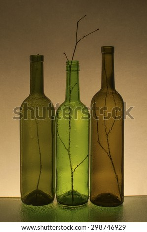 Composition with empty wine bottles and branches