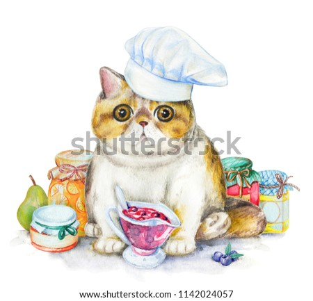Composition with exotic cat in chef's cap, jars of jam and fruit. Watercolor pencils illustration isolated on white background