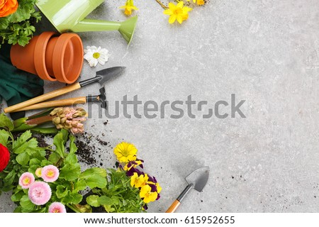 Composition with flowers and gardening tools with space for text