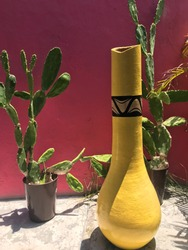 Composition with interplay between the mexican light and shadows, cactus plants and a vase in front of a colorful red wall.