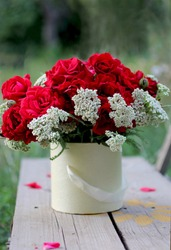 Composition with scarlet roses and white yarrow in the summer flowering garden.
