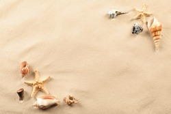 Composition with sea shells and starfish on sand. Concept of travel and vacation