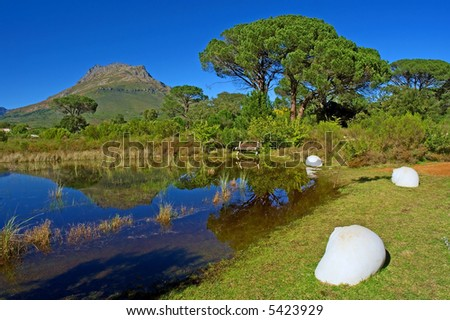 Composition with shells, lake, bench and mountain. Shot in August in Jan Marais Nature Reserve, Stellenbosch, South Africa.