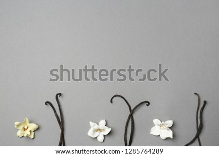 Composition with vanilla pods and flowers on grey background