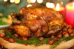 Composition with whole roasted turkey, coniferous branches and hazelnuts against defocused lights