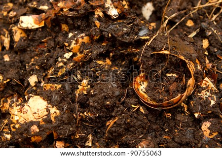 Compost - stock photo