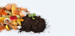 Compost from fruits, vegetable scraps and plant sprout in ground . waste for recycling. Food waste concept. Environmentally responsible behavior concept. copy space