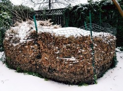 compost pile with leaves and snow