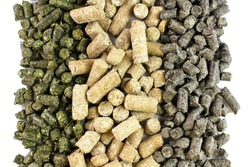 Compound feed for animals, livestock, granular feed mixtures isolated