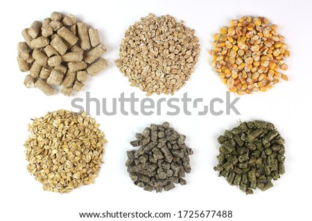 Compound feed for animals, livestock, in circles isolated on white background Stockfoto ©