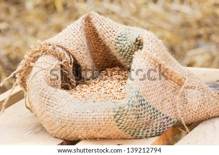 Compound Feed in sacks fodder for the animals