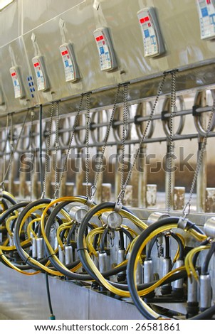 Computerized commercial milking machines on large dairy farm.