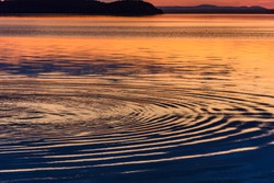 Concentric circles in the water of a lake at sunset