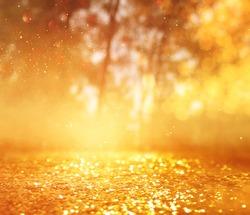 concept background photo of light burst among trees and glitter golden bokeh sparkles