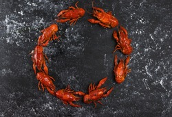 concept boiled red crayfish lined up in a circle, there is free space for inscription. Crayfish delicacy and beer snack