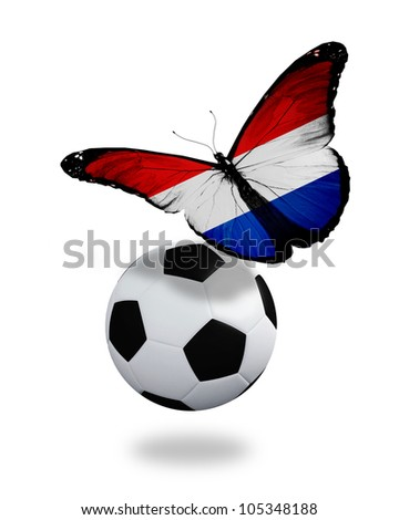Concept - butterfly with Netherlandish flag flying near the ball, like football team playing