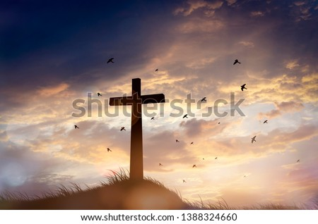 Concept conceptual black cross religion symbol silhouette in grass over sunset or sunrise sky #1388324660