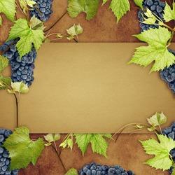 Concept design for a wine list.