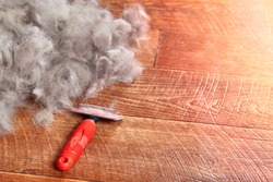 Concept Dogs Shed spring shedding grooming season. De shedding tool - rakers brush for Dog. Slicker brushes on floor next to a pile of wool. Copy space.
