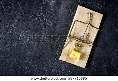 concept food for rodents in mousetrap wooden background top view