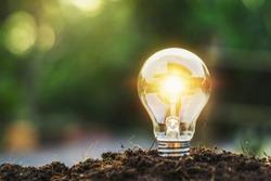 concept idea saving energy light bulb and sunlight