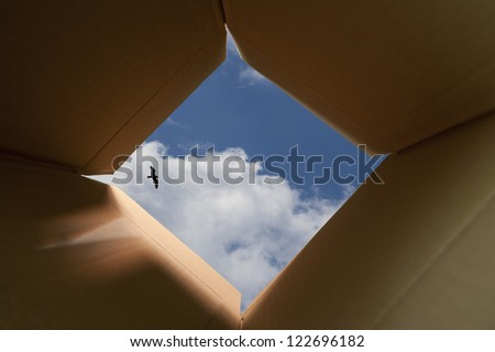 Concept image about freedom of mind and unconventional thinking outside the box.