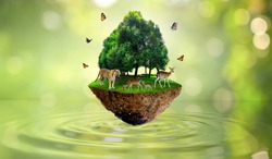 Concept Nature reserve conserve Wildlife reserve tiger Deer Global warming Food Loaf Ecology Human hands protecting the wild and wild animals tigers deer, trees in the background Sun light