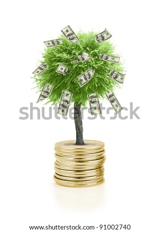Concept of a tree growing from stack of golden coins isolated on white background