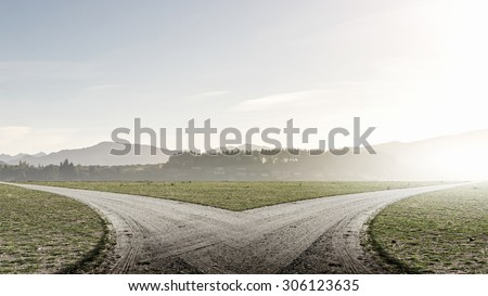 Shutterstock Concept of choice with crossroads spliting in two ways