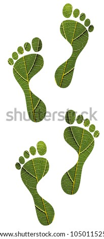 Concept of environmental conservation, eco friendly concept, green footprints, sustainable development, etc. created using macro image of a leaf with clipping path