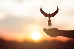 concept of freedom. Silhouette dove flying over the human hand.