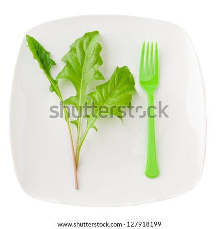 Concept of healthy eating or dieting. Plate with green salad leaves and fork isolated on white background.