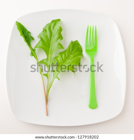 Concept of healthy eating or dieting. Plate with green salad leaves and fork on light background.