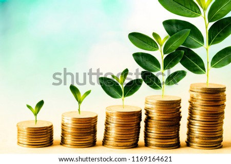 Concept of investment like a growing plant, There is interest and profit from investing fund. It is stacking coin and sky blue bokeh background. wallpaper for investment and cumulative