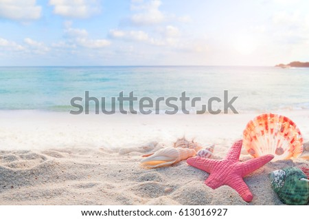 Concept of summertime on tropical beach. Seaside summer beach with starfish, shells, coral on sandbar and blur sea background. vintage color tone. #613016927