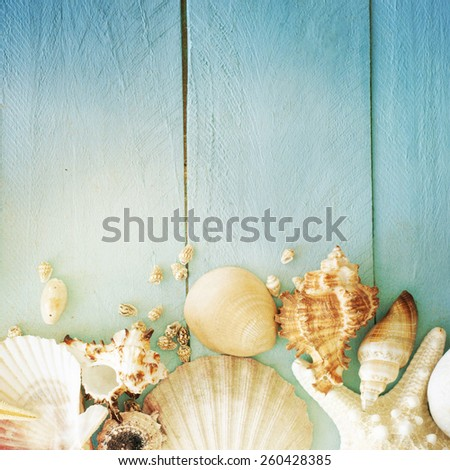 Concept of the summer time with fish star and sea shells on the wooden blue background #260428385
