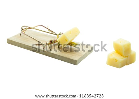 Concept on the topic of danger and risk. A mousetrap with a slice of cheese